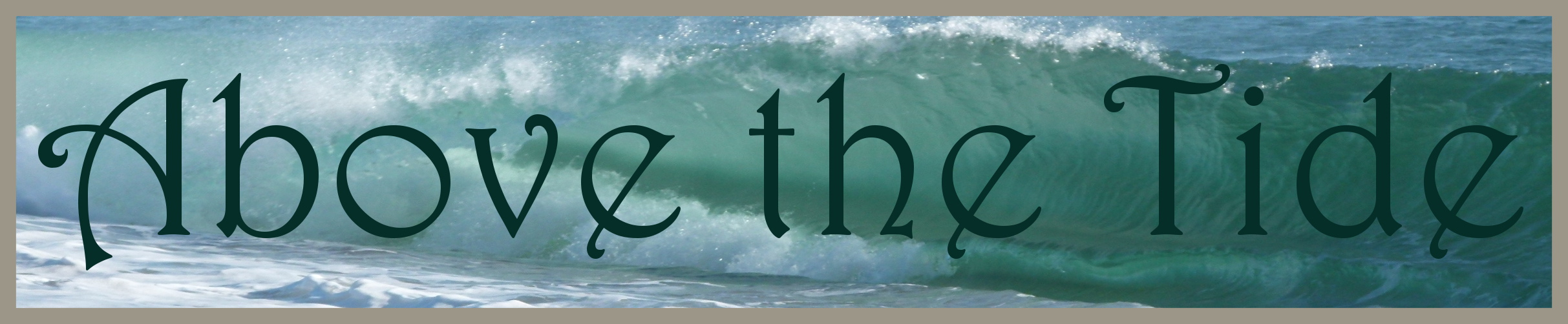 Above the Tide Banner